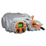 Bettis TEC2000 Actuator
